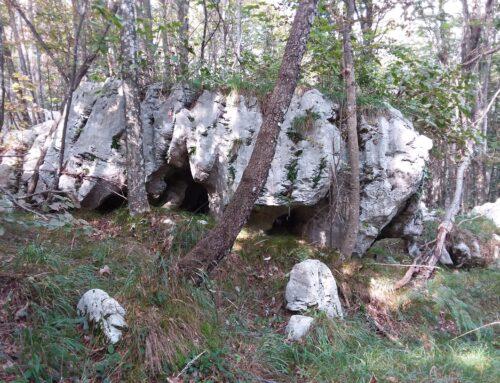 Panoramica monte Ciaurlec